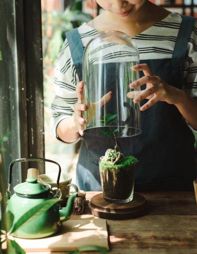 瓶子森林 4