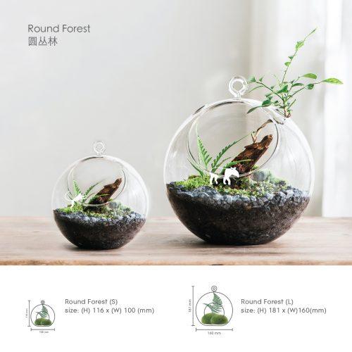 木木 III 《 重逢 》 《 Reunion 》 Reunion x Forest habitat workshop (RM158)